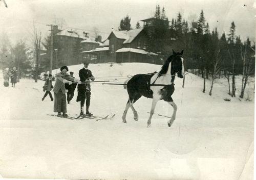 ski_joring_history