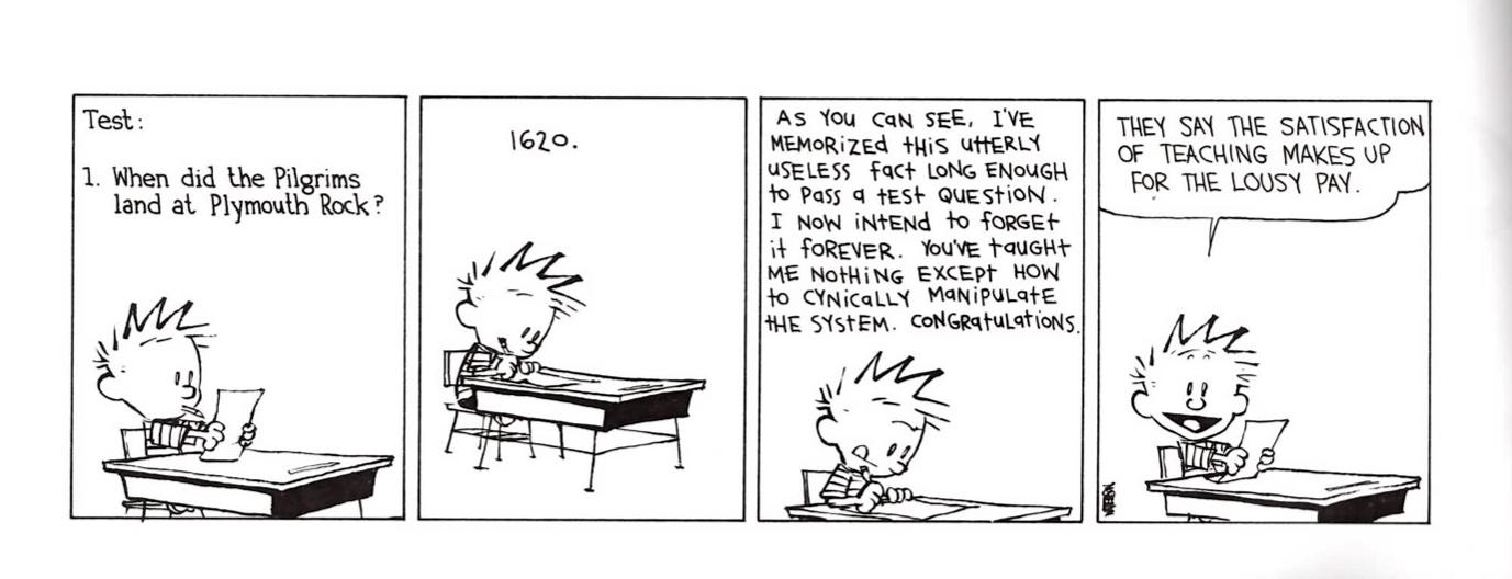 exam essay questions