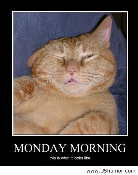 Monday Morning Jokes: Coffee - Catie Cordero